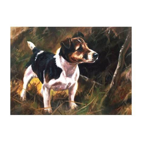 Jack (Jack Russell) Blank Greeting Cards - 6 Pack