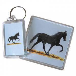 Acrylic Magnet - Walking Horse - 6 Pack