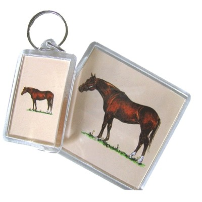 Acrylic Magnet - Thoroughbred - 6 Pack
