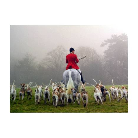 Foxhunting Blank Greeting Cards - 6 Pack