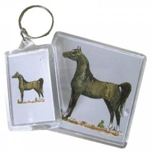Acrylic Key Ring - Arabian