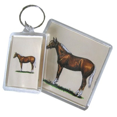 Acrylic Magnet - Quarter Horse - 6 Pack