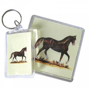 Acrylic Magnet - Paso Fino - 6 Pack