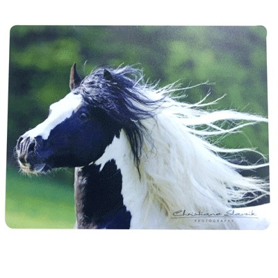 Gypsy Tinker Mouse Pad