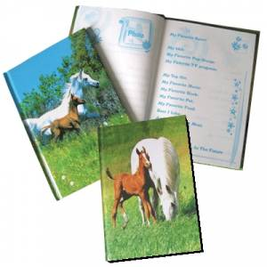 Friendship Book - 2 pack
