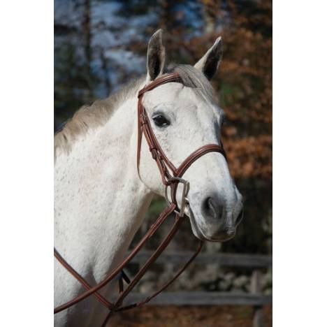 Shires Boston Snaffle Bridle