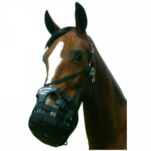 Best Friend Have-a-Heart Grazing Muzzle