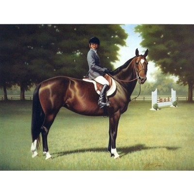 Horses - Junior Hunter - 6 Pack