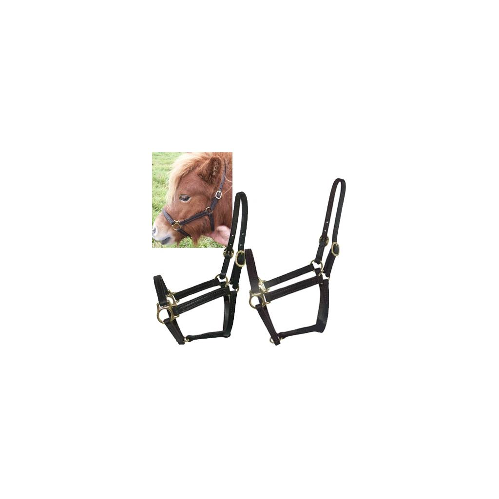Intrepid Miniature Horse Leather Stable Halter