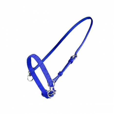 HorZe Nylon Fixed Head Halter with Martingale Ring