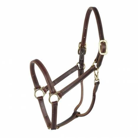 "Finn Tack 3/4"" Trotting Leather Halter"