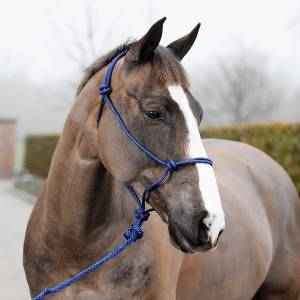 Horze Casper Halter with Lead