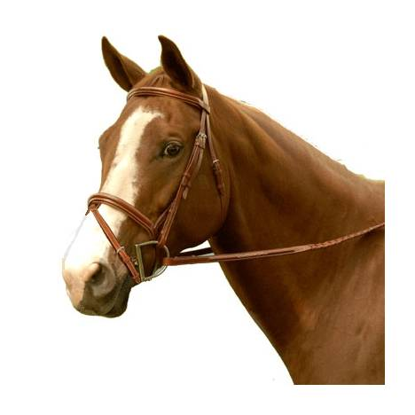 Exselle Elite Fancy Raised Padded Bridle