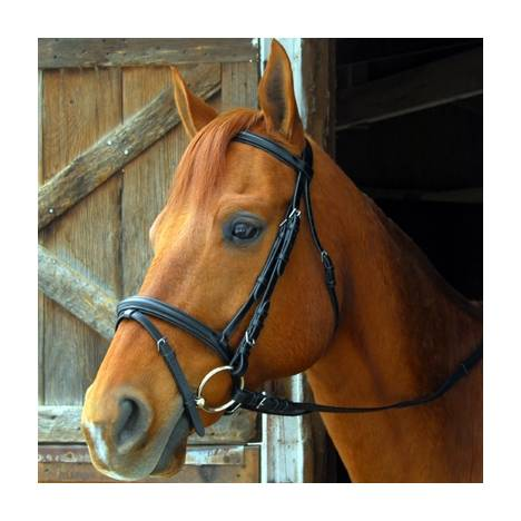 Exselle Elite Dressage Bridle