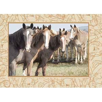 Spill Resistant Placemats - Colts