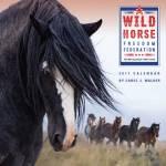 Equestrian Calendars