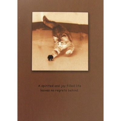 Sympathy (Cat) A Spirited & Joy Filled Life. Blank Greeting Cards - 6 Pack
