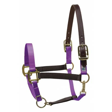 Perris Color Vision Nylon Safety Halter