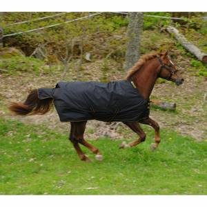 Bucas Irish Lightweight Horse Turnout Blanket