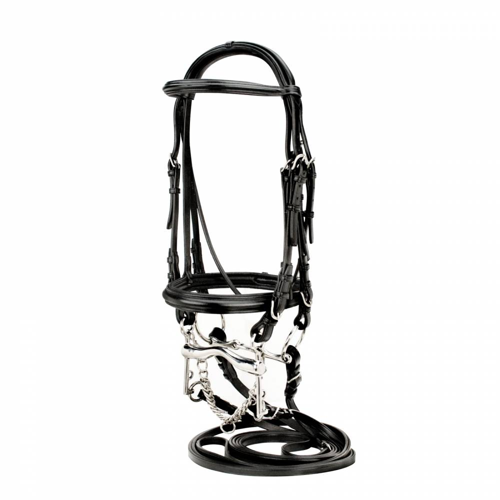 Silverleaf Raised Padded Double Bridle Equestriancollections