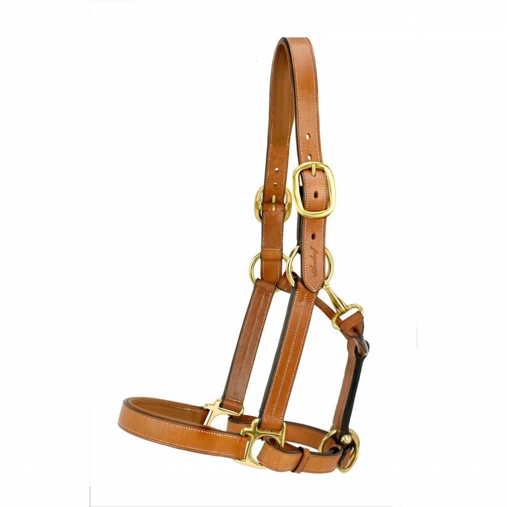 Silverleaf Padded Halter With Brass Equestriancollections