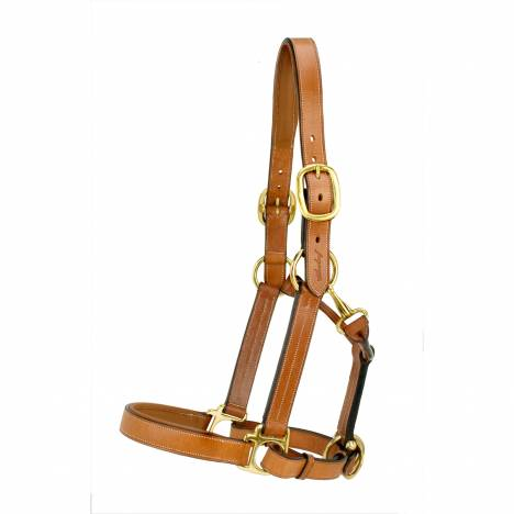 Silverleaf Padded Halter with Brass Fittings