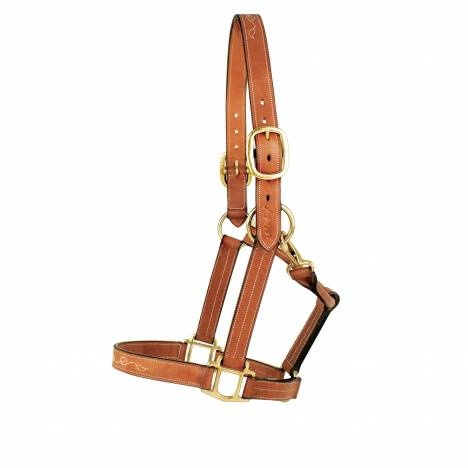 Silverleaf Fancy Halter with Brass Fittings