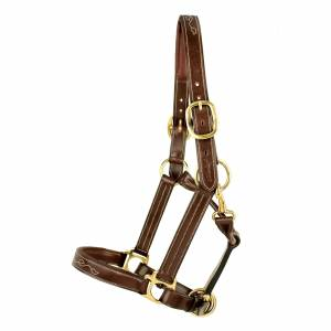 Silverleaf Fancy Padded Halter with Brass Fittings
