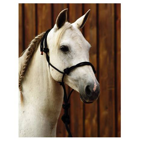 Classic Equine Work Halter with Lead