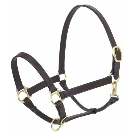 Camelot Draft Stable Halter