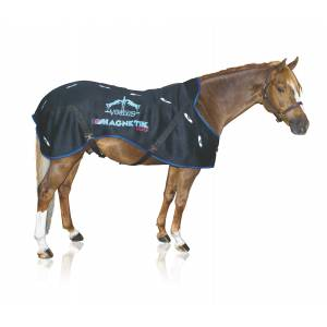 Veredus Magnetik Therapy Rug