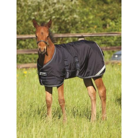 Amigo by Horseware Midweight Foal Turnout Blanket