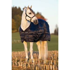 MIO Heavy Stable Rug Double