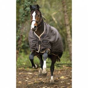 Rhino Pony Wug Turnout Blanket - Medium Weight (200g)