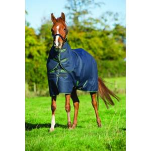 Amigo Pony Bravo 12 Plus Turnout Blanket - Medium Weight