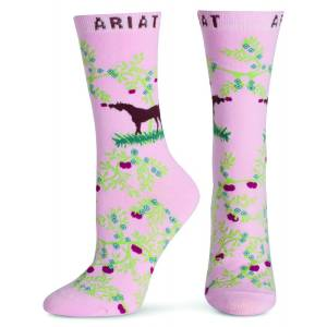 Ariat Apple Orchard Crew Socks - Ladies
