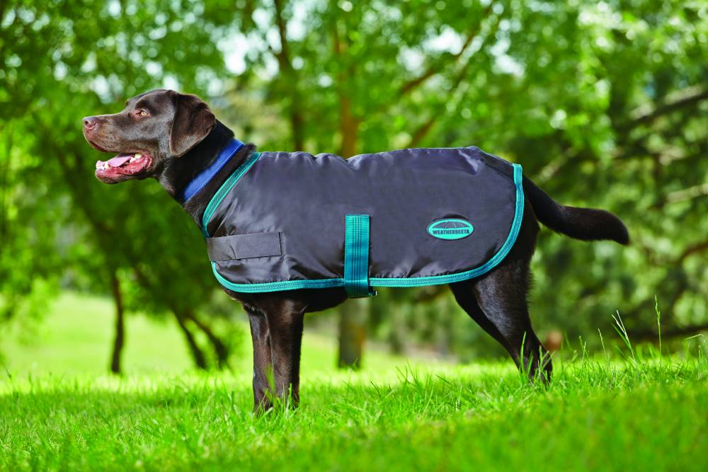 Weatherbeeta Windbreaker Fleece Lined Dog