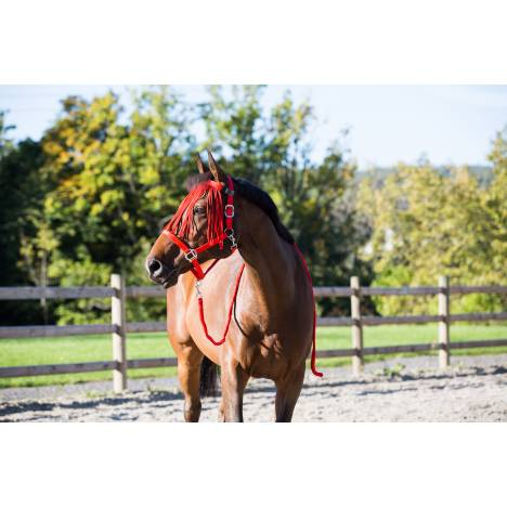 Horze Spirit Halter, Leadline & Fly Veil Set