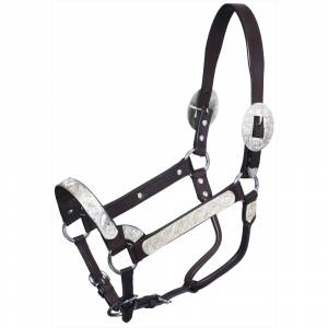 Tough-1 Premium Bright Cut Edge Silver with Silver Scroll Show Halter