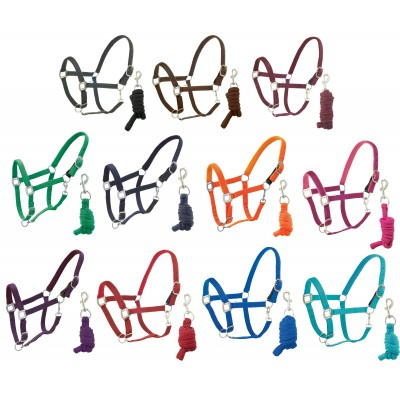 Centaur Fleece Padded Halter with Lead - Solid