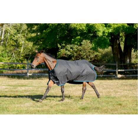 Shires Tempest Plus Turnout Blanket - 300 gm