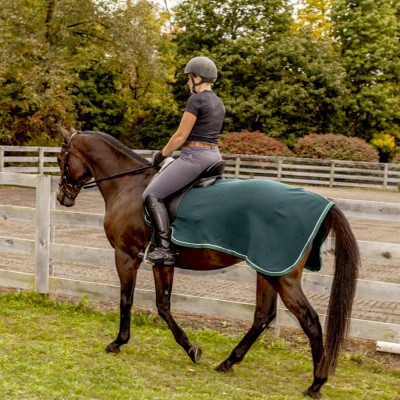 Saratoga Horseworks Fleece Exercise Rug