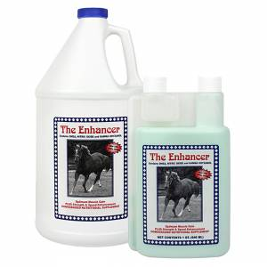 Cox Vet Lab The Enhancer