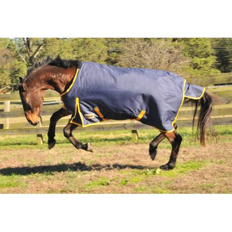 Kodiak Premium 1200D Medium Weight Waterproof Turnout Blanket