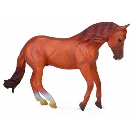 Breyer by CollectA Australian Stock Horse Stallion - Chestnut