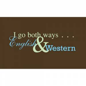 I Go Both Ways Tee Shirt