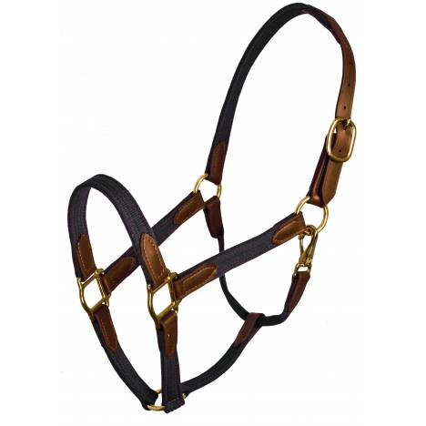 Perri's Beta and Cotton Safety Halter