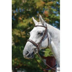 Shires Winchester Wide Padded Cavesson Bridle