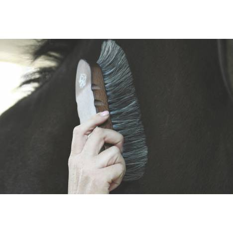 Tail Tamer Wood Series Large Horsehair Brush