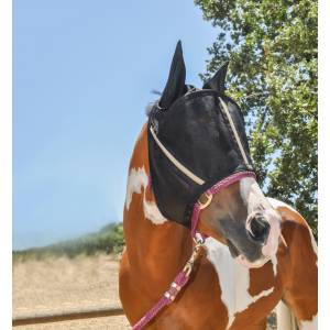 Noble Equestrian Guardsman Fly Mask with  Ear